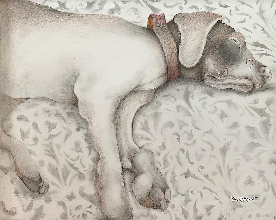 Barbara Willner Sleeping Hound
