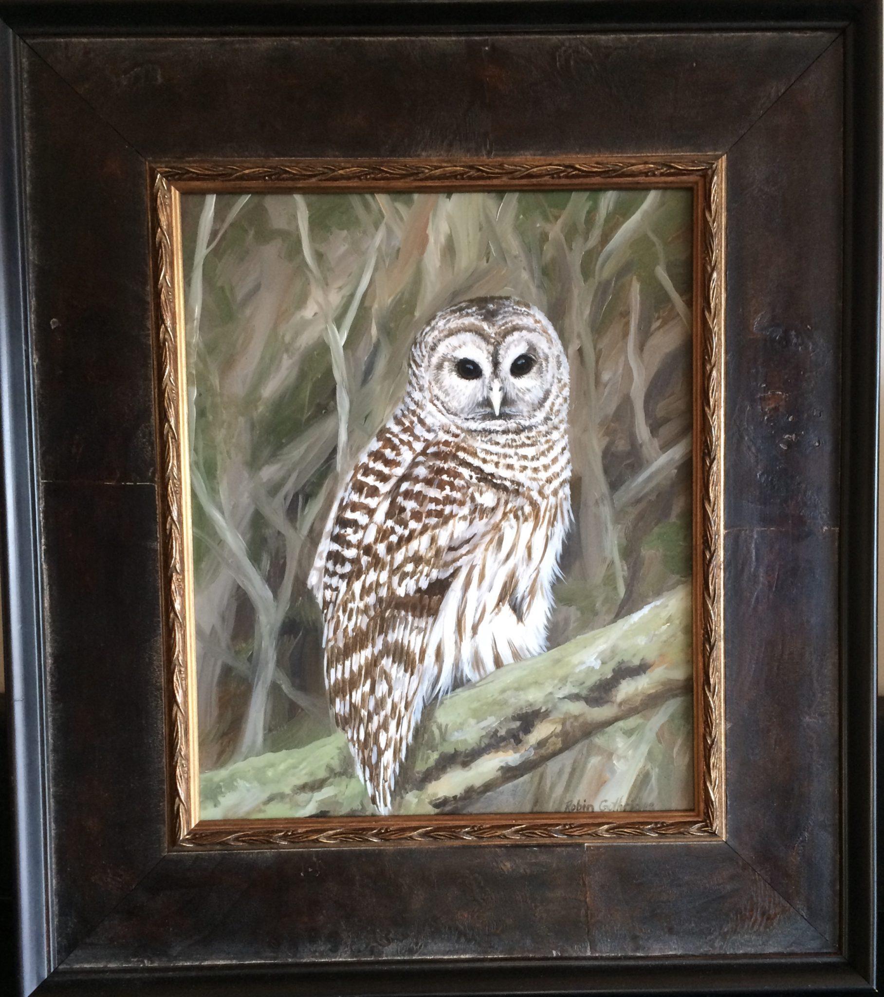 Guthridge, Robin 2 - Barred Owl