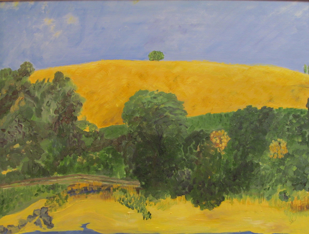 Rothenberg, Julia - Yellow Smoke, Park Iowa