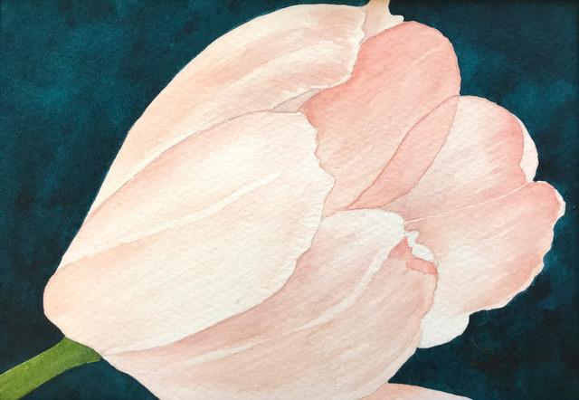 Rita Squire - Can A Tulip Blush