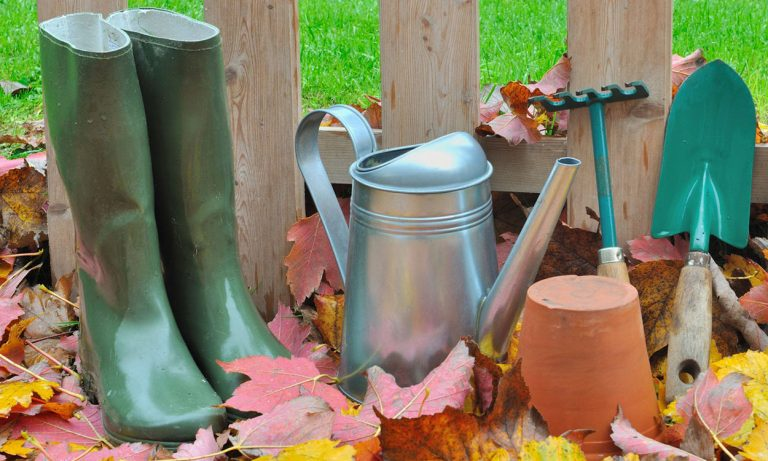 Gardening tools and accessories - boots, watering can, trowel, pot